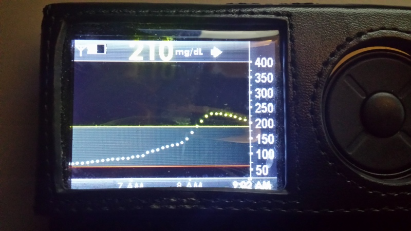 Morning CGM reading